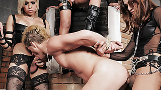 TS Dommes Dish Out Pleasure and Pain