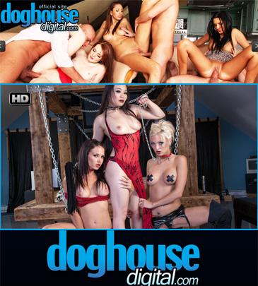 Dog House Digital